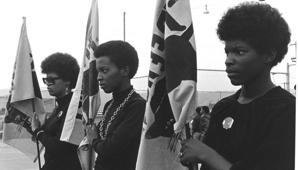 Click here to watch The Black Panthers: Vanguard Of The Revolution now.